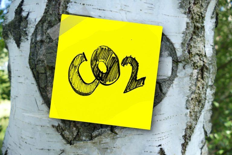 La production de CO2, nos relevés